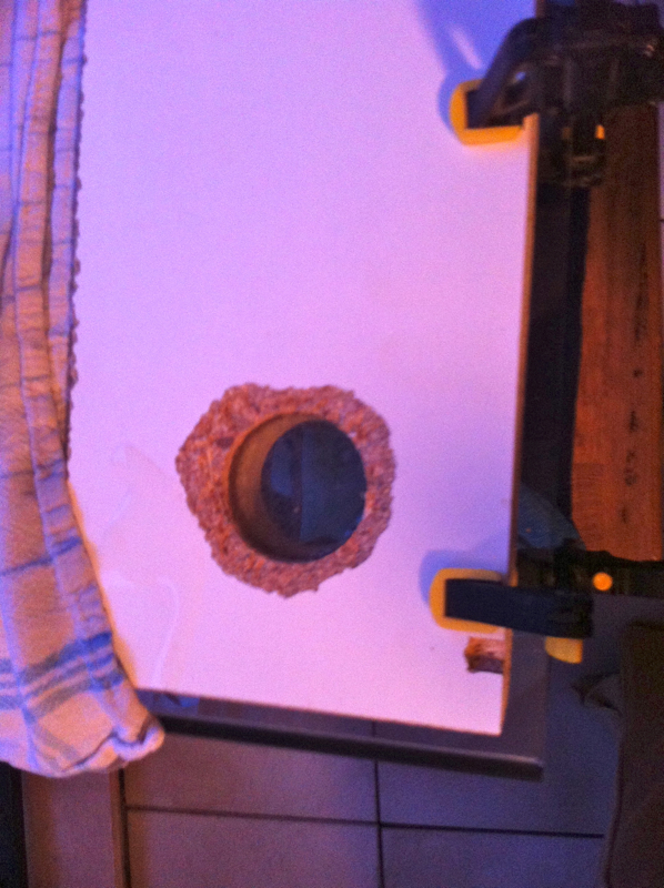 Projet nano récifal 60L - Projet pédagogique - Page 7 Decante08