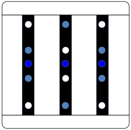 Projet nano récifal 60L - Projet pédagogique V2